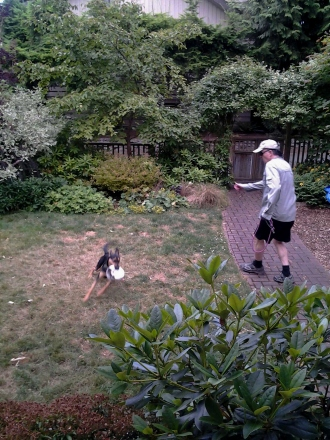 Mia on a run in the yard